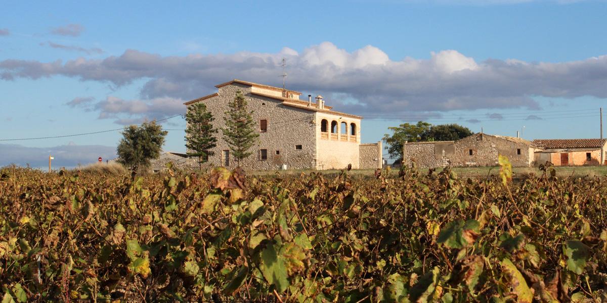 Aymar - Al celler Castell de Pujades