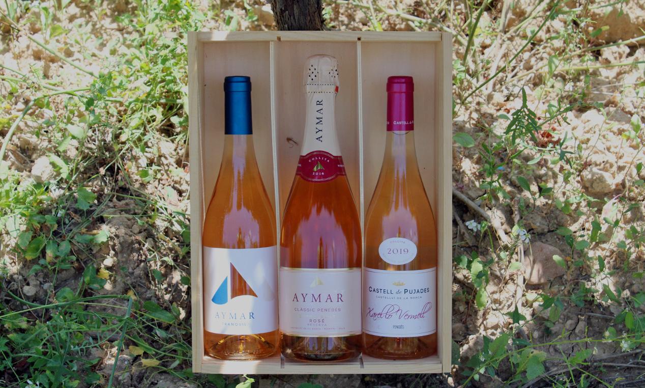 comprar-lot-rosat-vins-classic-penedes-aymar
